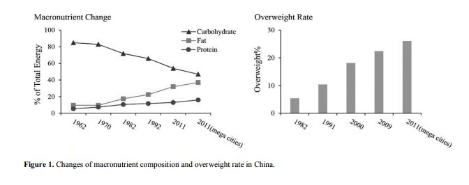 China low carb high fat