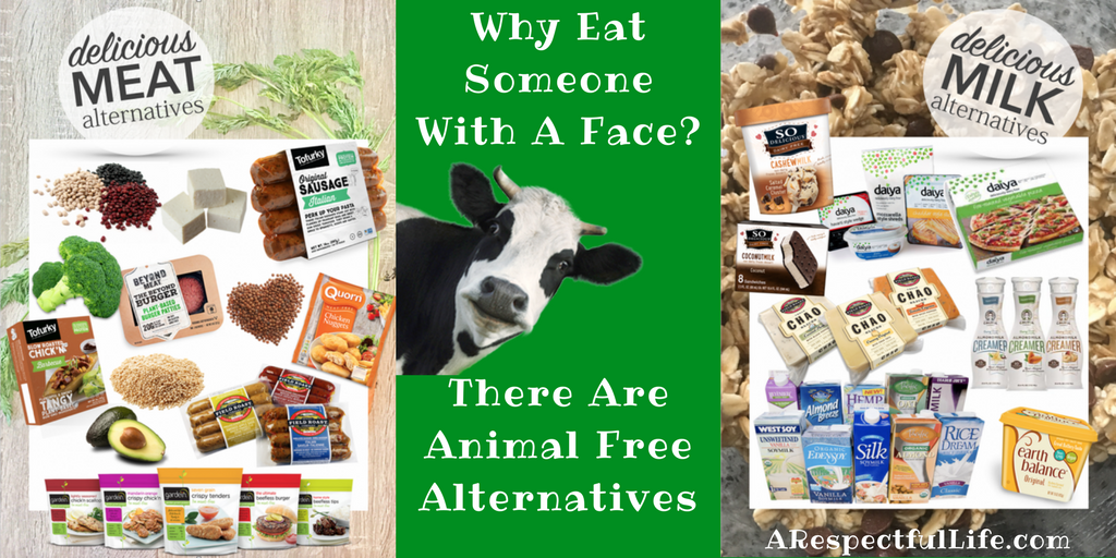 Why Eat Someone With A Face_ There Are Animal Free Alternatives