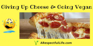 Giving Up Cheese & Going Vegan