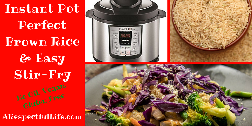 Instant Pot Perfect Brown Rice Stir Fry