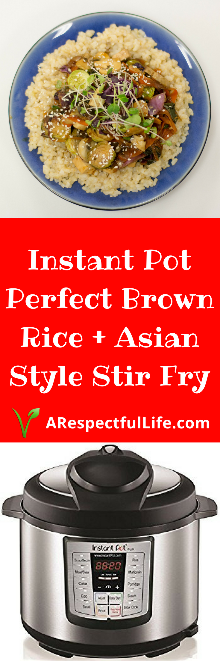 Instant Pot Perfect Brown Rice and Asian Stir Fry