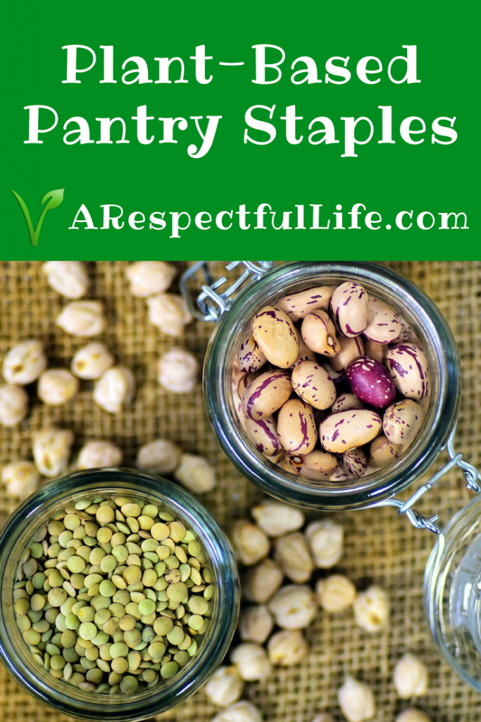 ant based pantry staples PIN