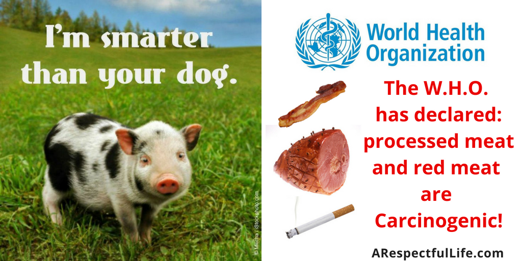 The WHO has classified processed meat as a group 1 Carcinogen