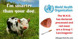 The W.H.O. has classified processed meat as a group 1 Carcinogenic!