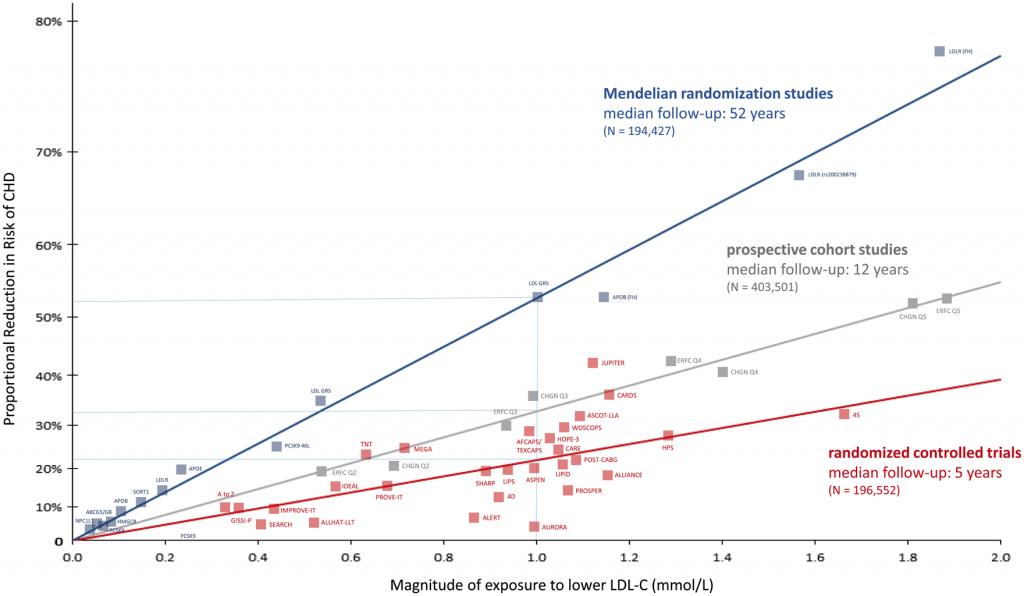 LDL cholesterol Causes cardio vascular disease