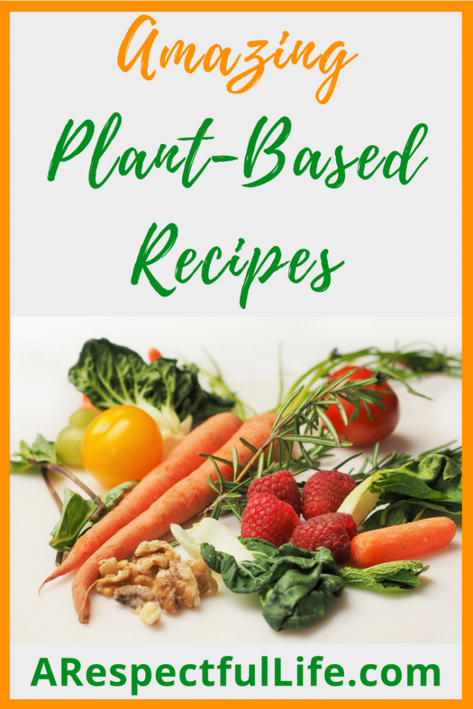 Amazing Plant-Based Recipes Blogger
