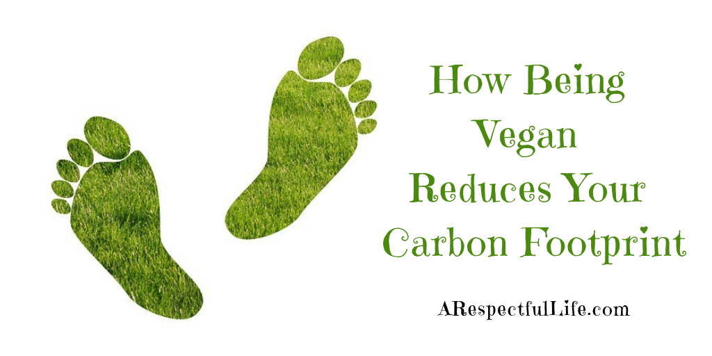 How Being Vegan Reduces Your Carbon Footprint