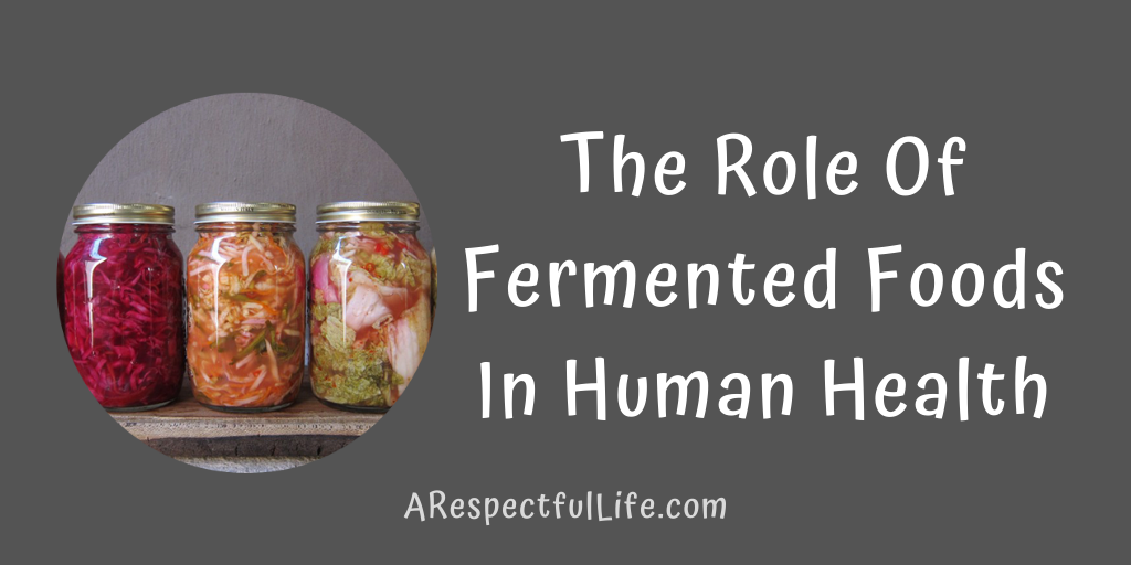 fermented foods human health