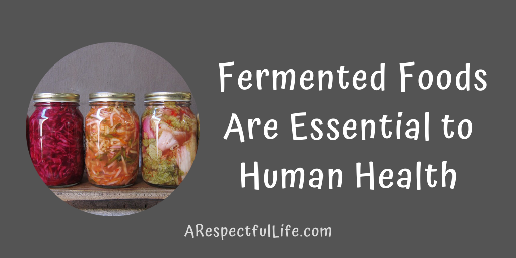 Fermented foods human health